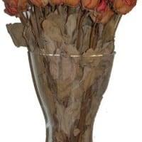 פרחים מיובשים